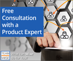Wise Businessware Services Consultation